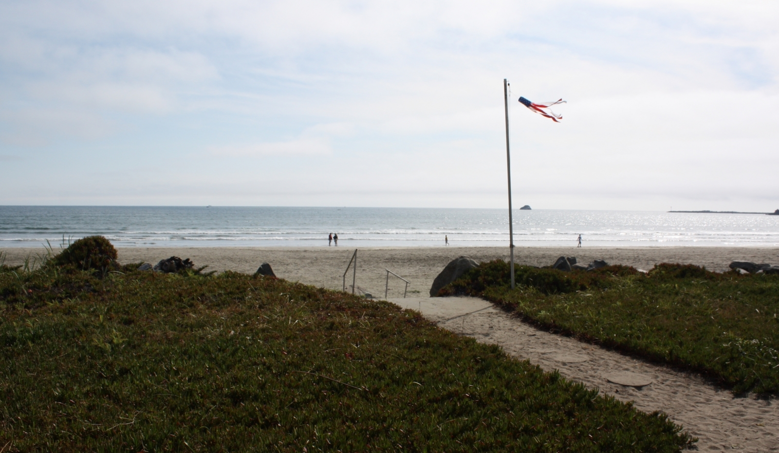 sandy walkway through grass to beach